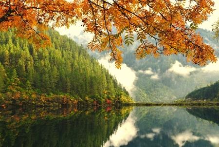 秋の木と中国の湖 写真素材