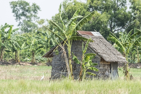 dwell house: small hut