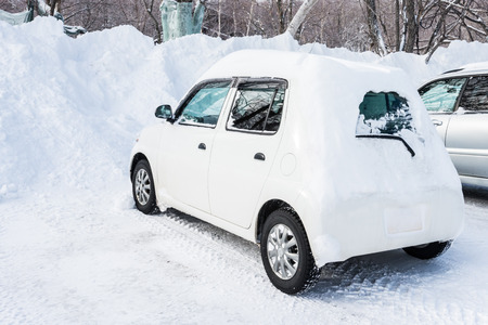 iciness: car covered with snow