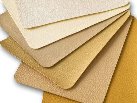 leatherette: Light Brown Tone Leatherette color sample