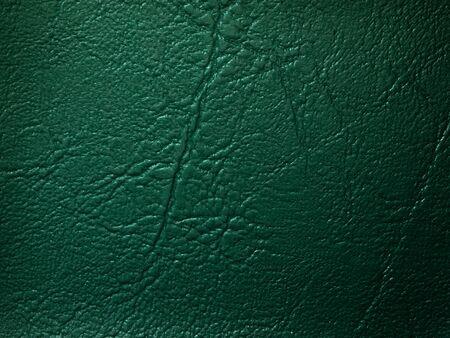 dark green semple color background for interior design Stock Photo - 7290767