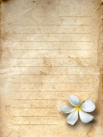 old office: old grunge letter paper white flower print Stock Photo