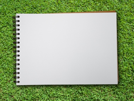 page views: White blank note book on green grass background Stock Photo