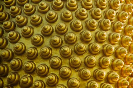 Golden spiral pattern from the head of the Buddha image Stock Photo - 8880881