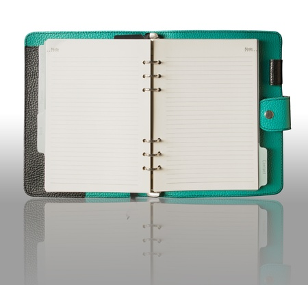 organizer page: Green Leather cover binder book and reflection