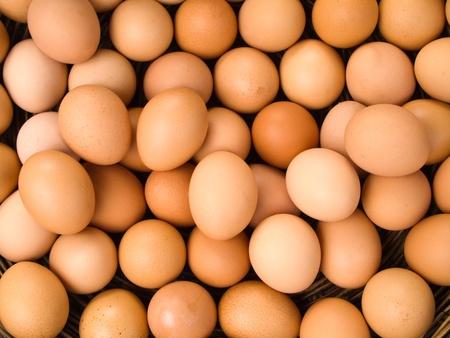 Top Blick auf Ei für Web-Hintergrund Standard-Bild - 11080717