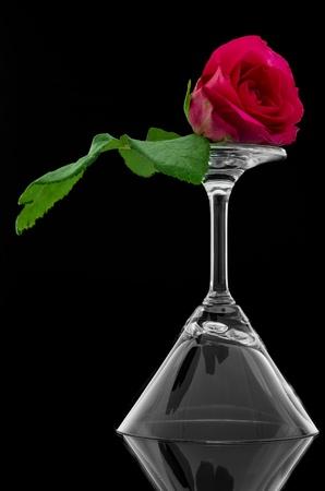 overturn: Rose su ribaltare bicchiere vuoto cocktail su sfondo nero e riflettere