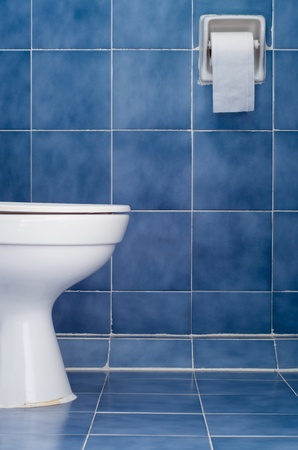 White ceramic sanitary ware and tissues in Blue bathroom photo