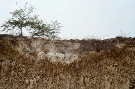 derrumbe: La evidencia de la subsidencia y colapso de la tierra