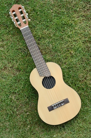 Acoustic Guitar LeLe on green grass photo