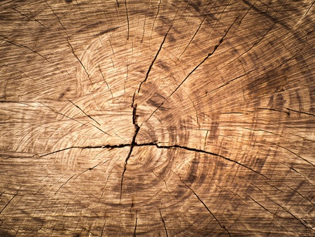 Texture of old brown Cut wood for web background photo