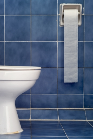 White Sanitary Ware And Long Tissues in Blue Bathroom photo