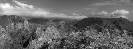 black and white forest: Mountain Black and White Over View Panorama Cloud on Top Hill and Tree