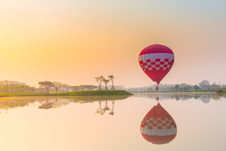 hot air balloons flying over Flower field with sunrise at Chiang Rai Province, Thailand