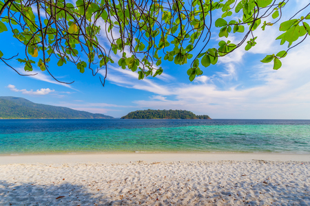 belle plage blanche avec arbre tropical mer pour vacances et détente à lipe island thaïlande