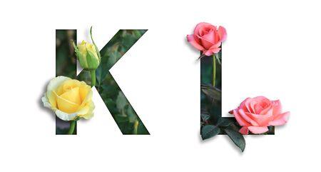 Font with flower K-L made form the flower for desing decoration Reklamní fotografie
