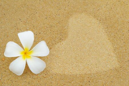 Plumeria flowers white with a heart on the romantic beach  Stock Photo