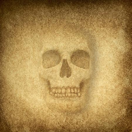 두개골 스톡 사진