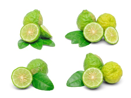 Kaffir lime photo