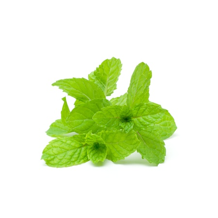 Mint aromatic herbs Stock Photo