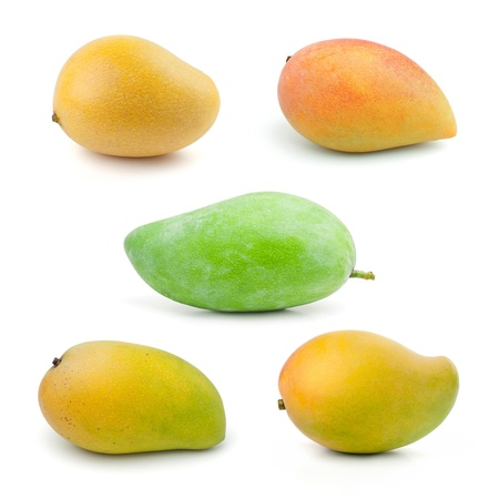 Set of Mango isolated on white background