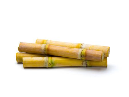 Sugar cane isolated on white background Foto de archivo
