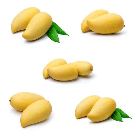mango leaf: Mango on white surface