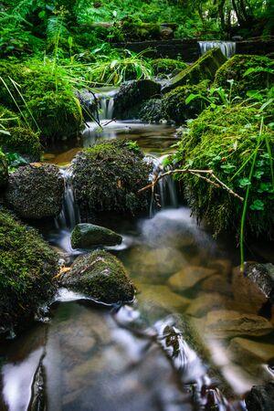 Forest stream running over mossy rocks Standard-Bild