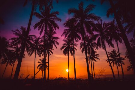 human silhouette: Silhouette coconut palm trees on beach at sunset. Vintage tone. Stock Photo