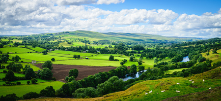 meandering: Panorama Meandering River making its way through lush green rural farmland in the warm early sunlight.