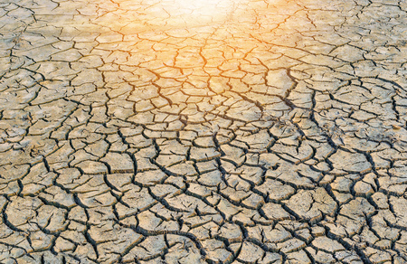 during: Background of dry cracked soil dirt or earth during drought