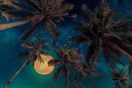 Silhouette coconut palm tree with the full Moon and Milky way galaxy on night sky. Vintage tone (Elements of this moon image furnished by NASA) Stock Photo