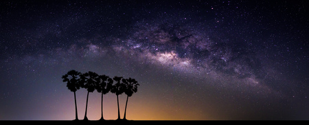 Landscape with Milky way galaxy. Night sky with stars and silhouette coconut palm tree on the mountain. Long exposure photograph.
