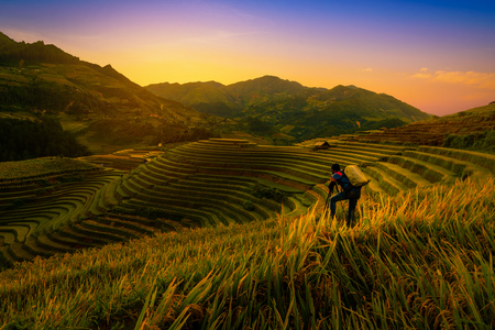 Photographer taking photo of Rice fields on terraced with wooden pavilion at sunset in Mu Cang Chai, YenBai, Vietnam. Stock Photo
