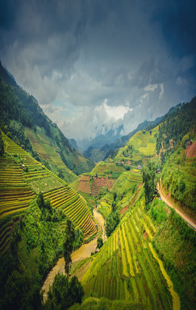 Rice fields on terraced at dramatic sky background in Mu Cang Chai, YenBai, Vietnam.