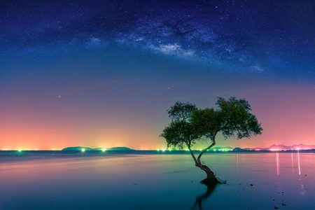 Landscape with Milky way galaxy. Night sky with stars and silhouette mangrove tree in sea. Long exposure photograph.