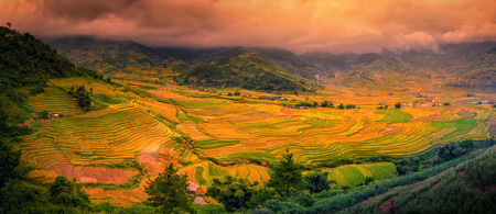 Rice fields on terraced with wooden pavilion at sunset in Sa Pa, YenBai, Vietnam. Stock Photo