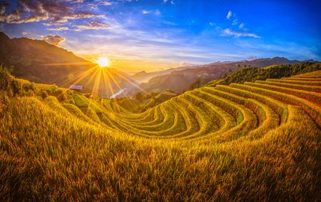 Rice fields on terraced with wooden pavilion at sunset in Mu Cang Chai, YenBai, Vietnam. 版權商用圖片 - 109206932