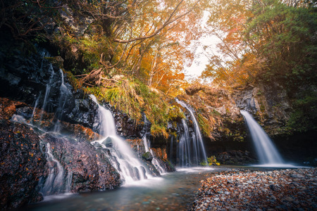Waterfall with autumn foliage in Fujinomiya, Japan. Stock Photo