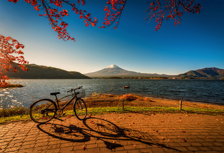 Mt. Fuji over Lake Kawaguchiko with bicycle and autumn foliage at sunrise in Fujikawaguchiko, Japan.