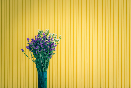 Yellow and purple flower in pot on yellow background. Stock Photo