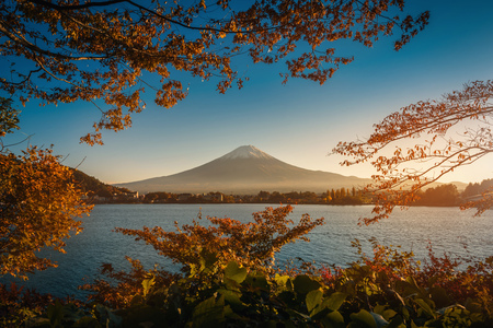 Mt. Fuji over Lake Kawaguchiko with autumn foliage at sunset in Fujikawaguchiko, Japan.