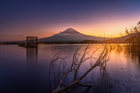 Mt. Fuji over Lake Kawaguchiko with dead tree at sunset in Fujikawaguchiko, Japan.