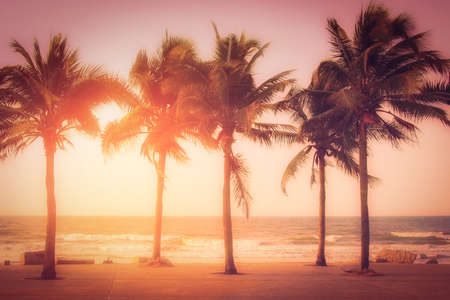Silhouette coconut palm trees near the beach at sunset. Vintage tone.