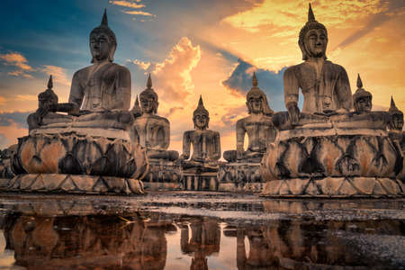 Many Statue buddha image at sunset in southen of Thailand 版權商用圖片