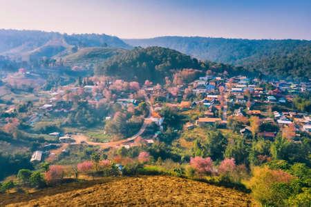 Aerial view image of Rong Kla Village and Sakura Tree at sunrise in Phu Hin Rong Kla National Park, Phitsanulok province, Thailand