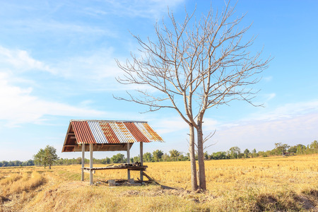 of yesteryear: Farmhouse located in the field of rural areas in Thailand. Stock Photo