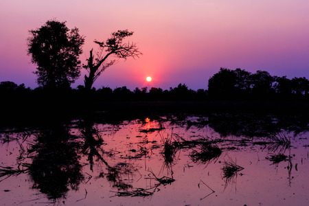 Landscape evening sun in rural areas of the country Thailand. photo
