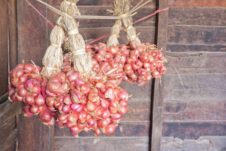 red onions: Red onions hanging on a rope in the house.