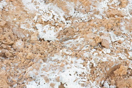 Colorful dry saline soil grunge surface with salt stain  on soil surface